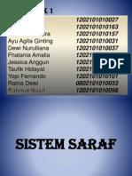 14. SISTEM SARAF.pptx