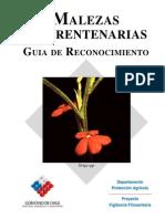 MALEZAS_CUARENTENARIAS.pdf