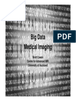 Big Data Medical Imaging - Brett Cowan 6