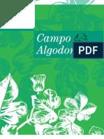 Campo Algodonero