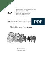 Modelamiento de La Aorta