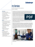 wellsite_chemistry_services_ps.pdf