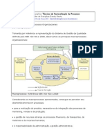 Identificação Dos Processos Organizacionais