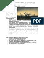 LA LITERATURA ROMÁNTICA EN ESPAÑA.docx
