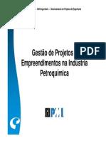 Gestao de Projetos e Empreendimentos Na Ind Petro