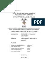 RESPONSABILIDAD_PENAL_y_civil.docx