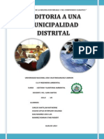 Monografia 2 Gestion y Auditoria Ambiental