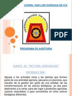 35 Programa de Auditoria