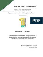 Tratamientos Combinados FisicoquímicosYDeOxidacionPa-1486