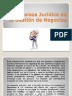 Naturaleza Jurídica de La Gestión de Negocios