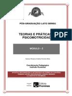 Teorias e Práticas Da Psicomotricidade-módulo 5
