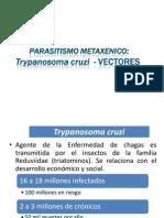 Trypanosoma Cruzy y Vectores-chagas PMB 2014