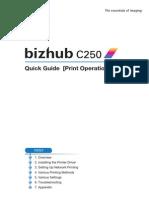 Bizhub c250 Quick Guide