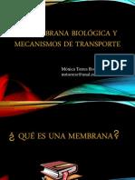 Trasnporte a Traves de Membrana (1)