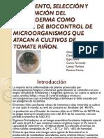 Presentación Proyecto Trichoderma