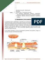 6ta. Semana Segunda Unidad Membrana Citoplasmatica Citoplasma Lectura 2008