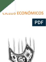 CICLOS ECONÓMICOS_temasintegrados