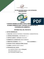Informe Medio Ambiente_ayacucho