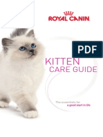 RC US Kitten Guide_interactive_reader
