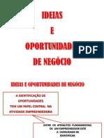 EMPREENDEDORISMO E OPORTUNIDADES DE NEGOCIO.