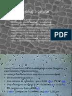 Biología celular 1 CLASE (1).pptx