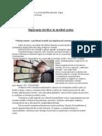 Siguranu021Ba Elevilor u00EEn Mediul u0219colar - Referat CJRAE