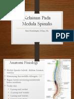 Kelainan Pada Medula Spinalis