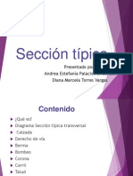 Sección típica
