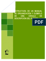 Estructura de Un Manual de Organizacion