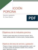 6.-Servicio y Gestación produccion porcina