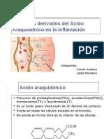 Derivados del acido  Araquidonico