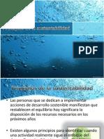 principiosdelasustentabilidad-140223192431-phpapp02