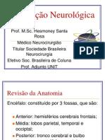Avaliacao Neurologica II