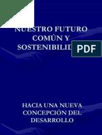 45897954-desarrollo-sostenible.ppt