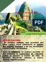 Defensa Del Patrimonio Cultural (1)