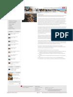 DSI_PERU_Soporte Técnico[1]