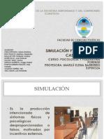 Simulación y Disimulación