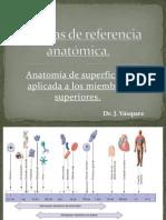 1 Planos de Referencia y anatomia de la superficie (Dr. Vasquez) (1).pdf