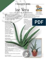 Aloe Vera Medicinal