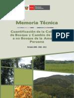 Memoria-Tecnica-Cobertura-de-Bosque-y-no-Bosque-2009-2010-2011.pdf