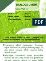 Tugas Biologi Umum Kelp. 12