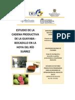 Estudio de La Cadena Productiva de La Guayaba Bocadillo en La Hoya Del Rio Suarez Santander