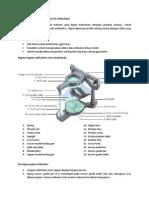 Pemasangan model di artikulator dan komunikasi ke lab untuk pembuatan GTC