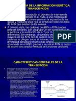 CLASES TEMA 11.ppt