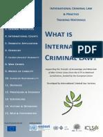 Module 2 - International Criminal Law