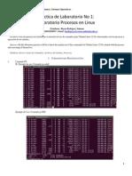 Informe Práctica Procesos Linux