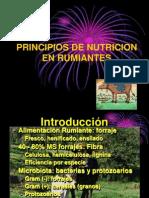 Degradacion Ruminal Ict