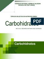 Clase IV. Digestion de Los Carbohidratos