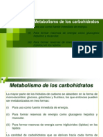 Clase Viii. Metabolismo Cho