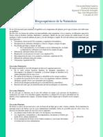 Ciclos Biogeoquímicos de La Naturaleza